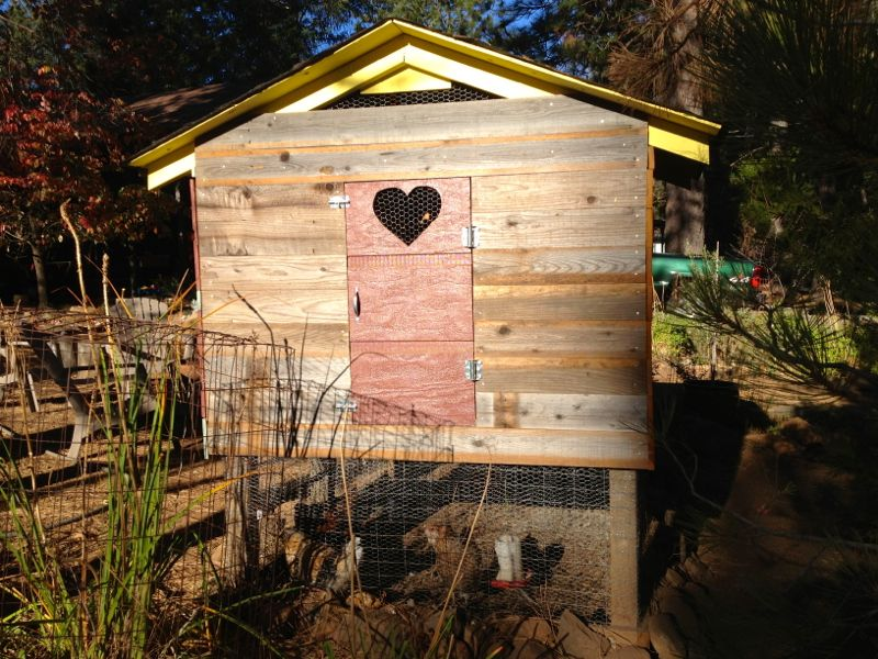 Heart Door Chicken Coop