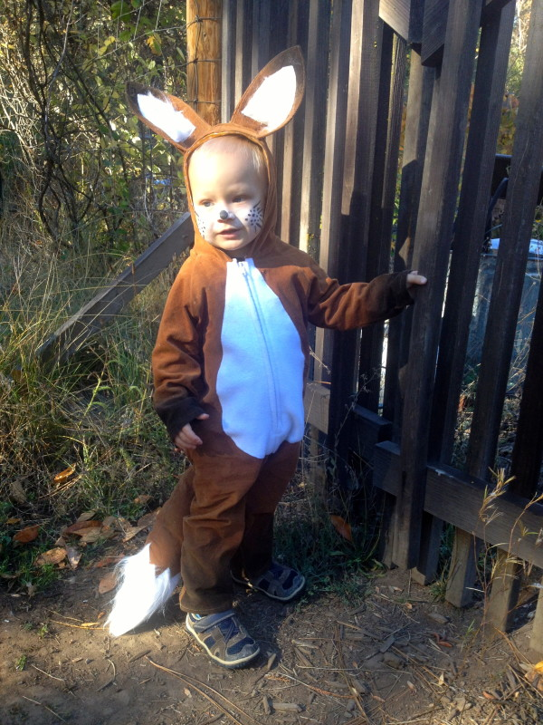 My Tricky Fox Toddler Fox Costume  sc 1 st  The Patchy Lawn & My Tricky Fox Toddler Fox Costume - The Patchy Lawn