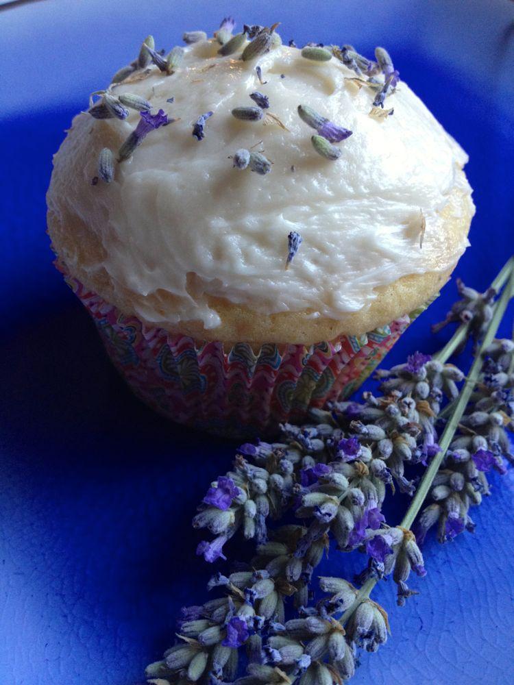 laender honey cupcake