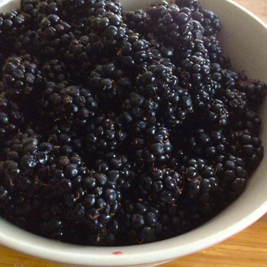 Blackberries for icecream