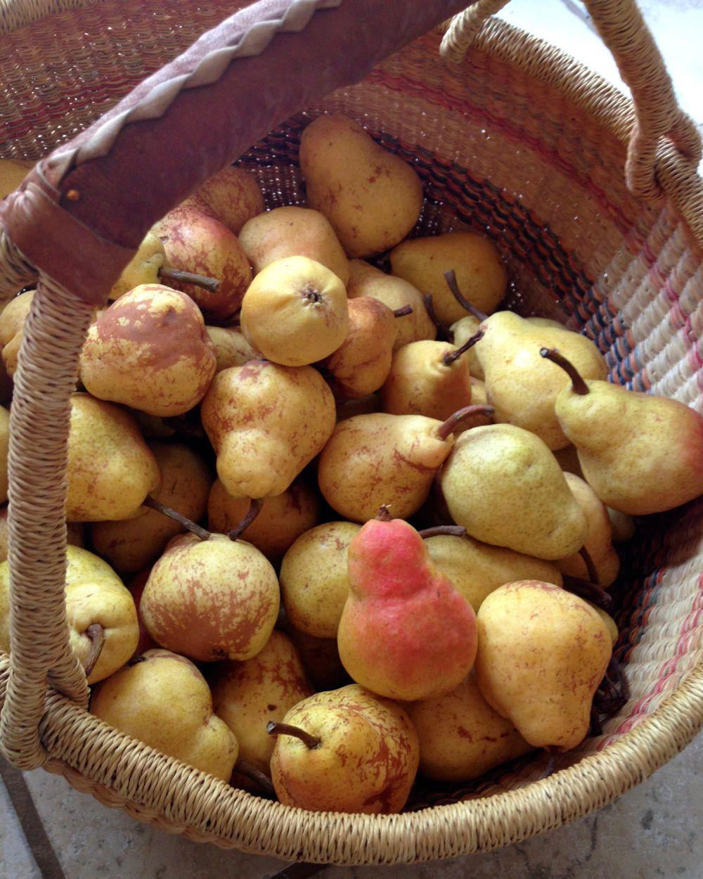 Aidian's Pears