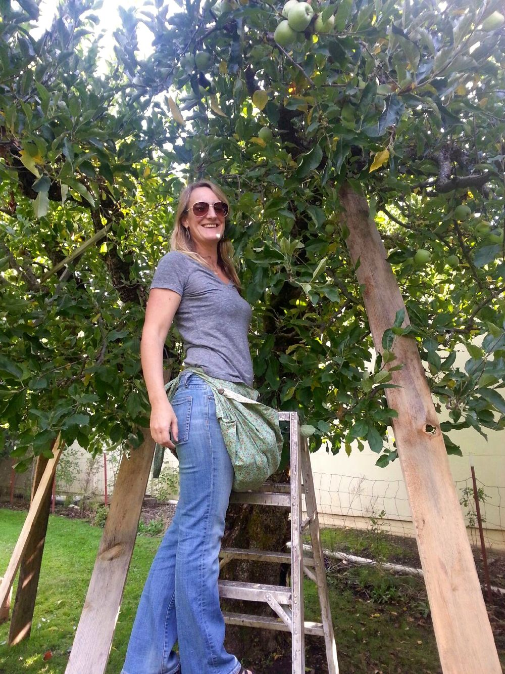 Jessica picking apples