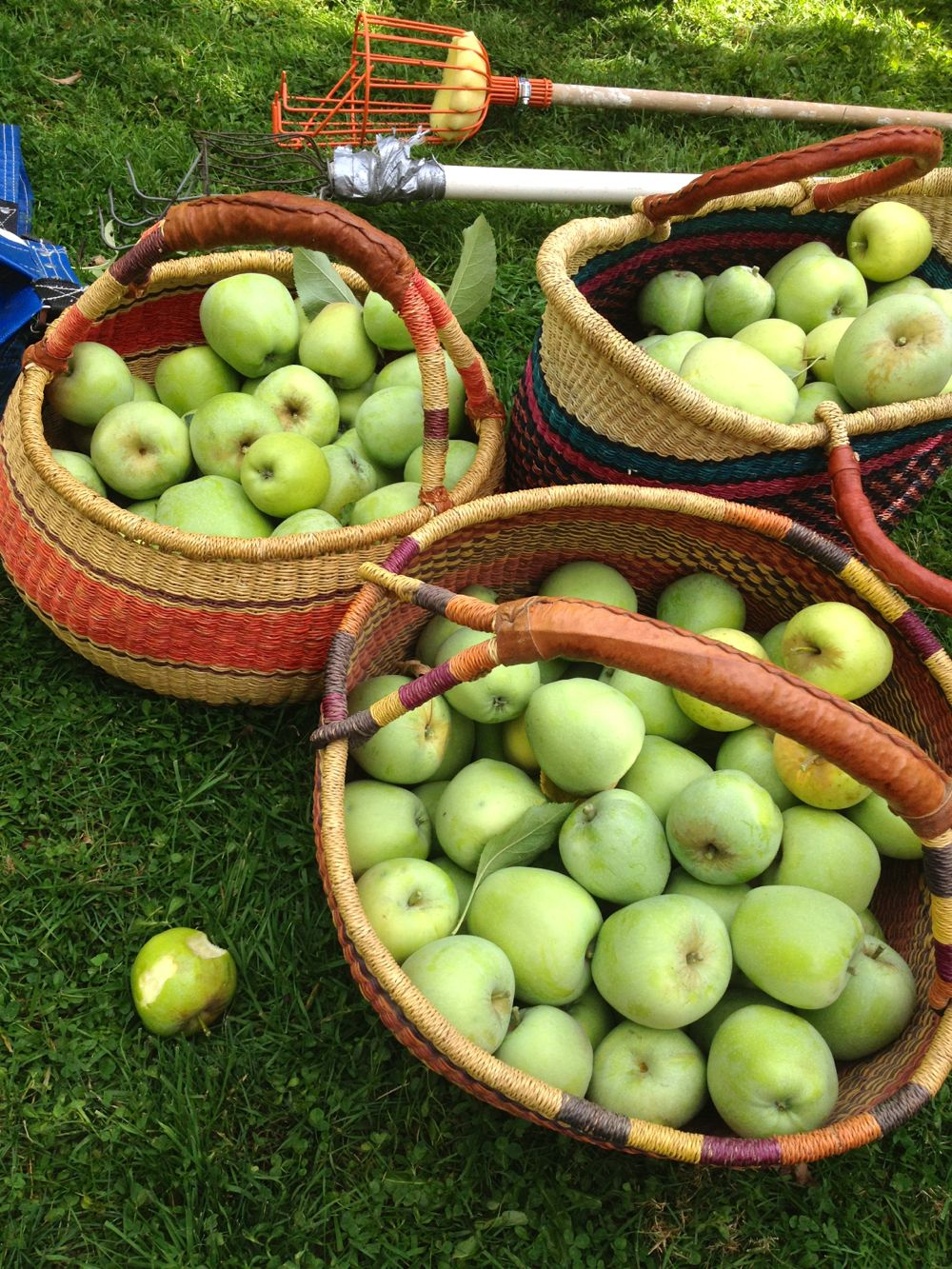 baskets of apples
