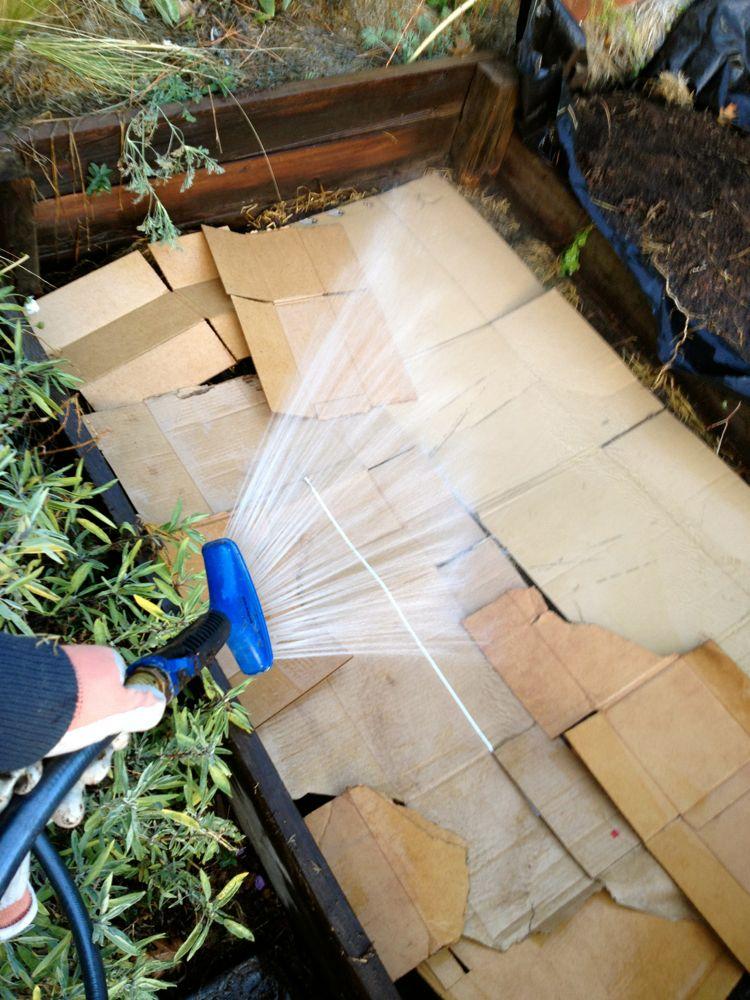 cardboard layer raised bed