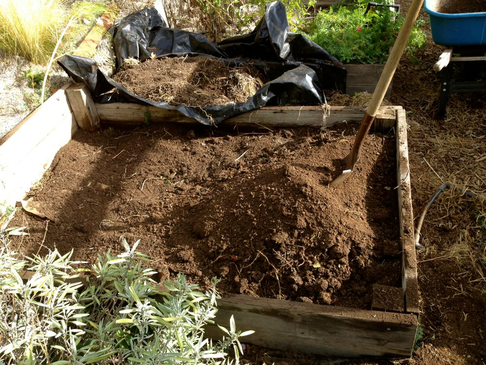 compost layer of raised bed