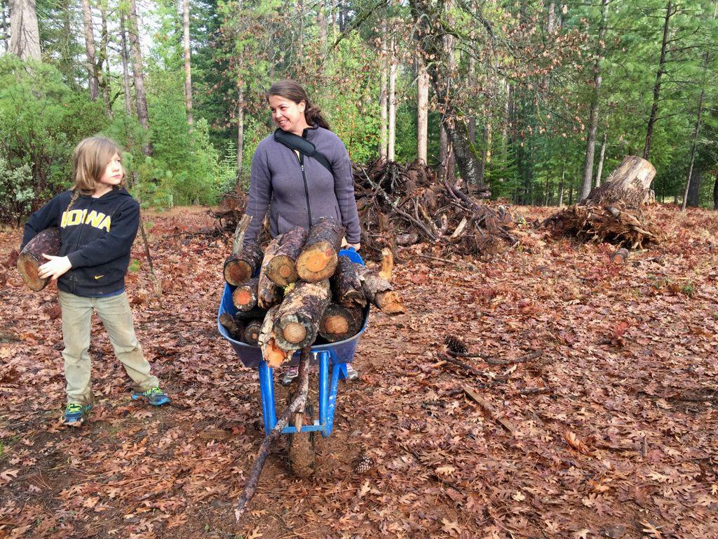 logs for hugelkulture