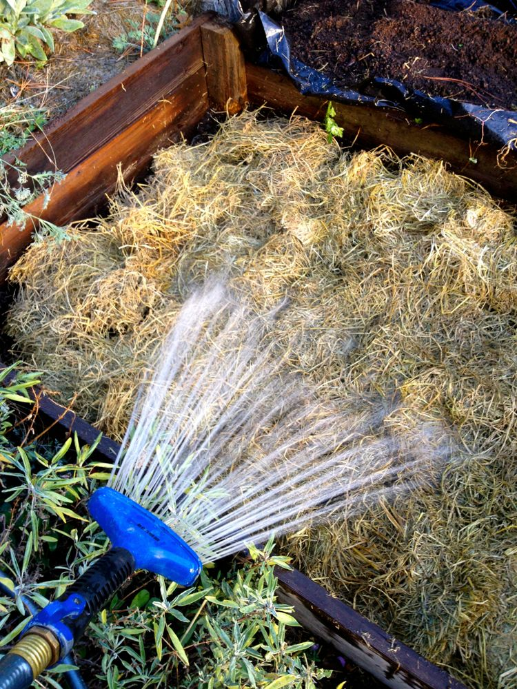 water straw layer