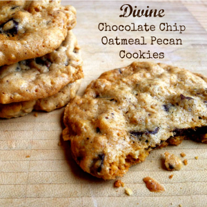 Divine Oatmeal Chocolate Chip Cookies with Pecans - The Patchy Lawn