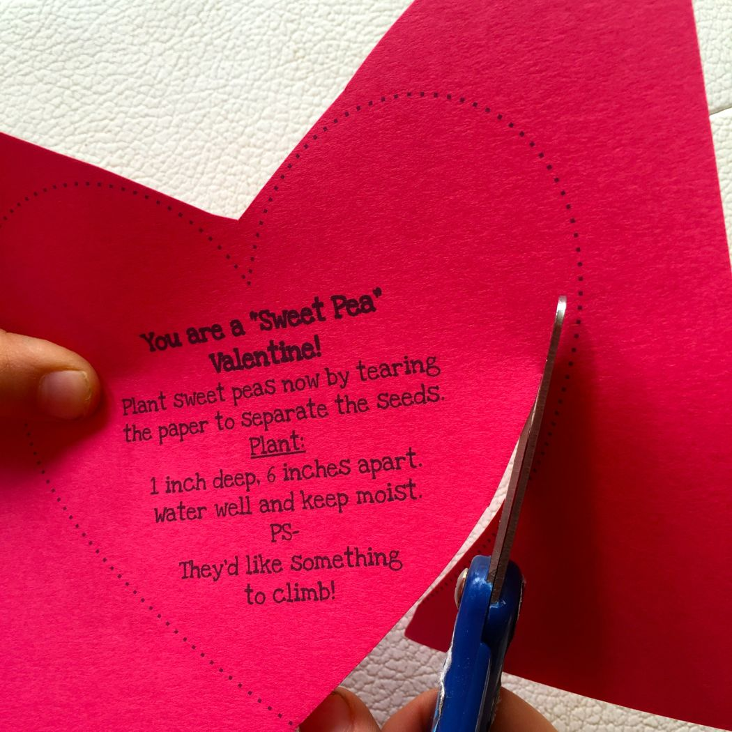 sweet pea valentine cut out