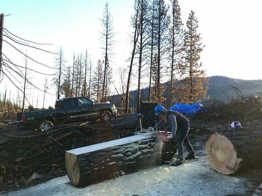 milling big tree