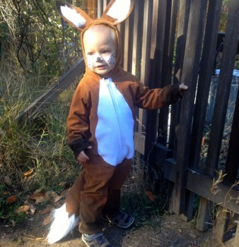 My Tricky Fox, Toddler Fox Costume