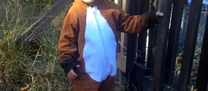 My Tricky Fox, Toddler Fox Costume