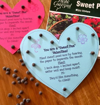 Sweet Pea Valentines
