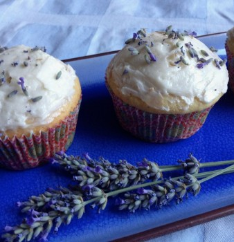 Lavender Honey Cupcakes for Lyla