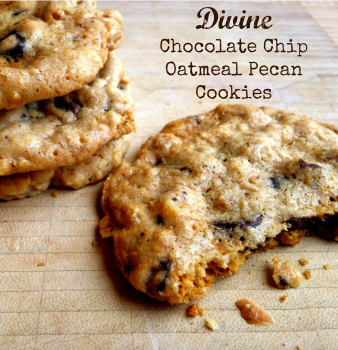 chunk cookies oatmeal chocolate chip cookie oatmeal chocolate chip ...
